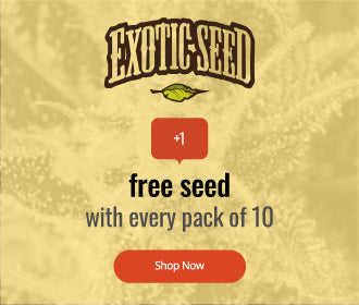 Exotic Seeds offer image, one free Seed with every 10 pack