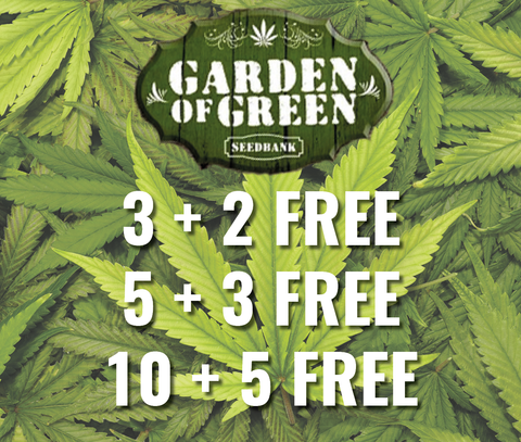 Free Seeds from Garden of Green