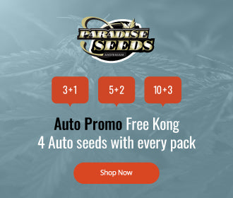 Paradise Seeds free auto seed offer