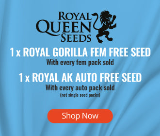 Royal Queen Seeds free seed offer