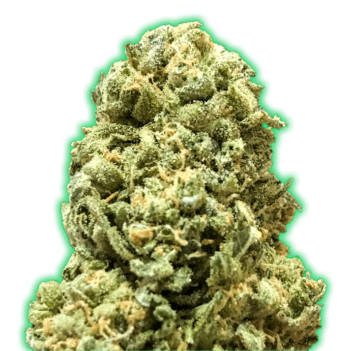Monster Girl Scout Cookies Feminised Seeds