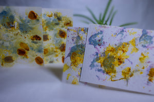 Blank Flower Pressed Greeting Cards