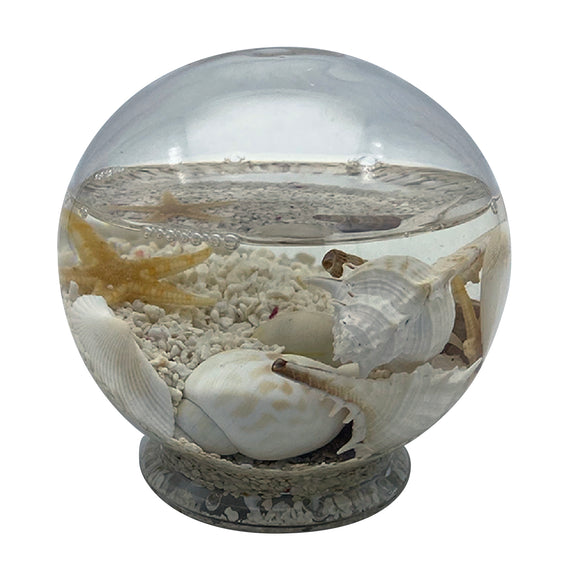 Glass Orb Tide Pool Medium