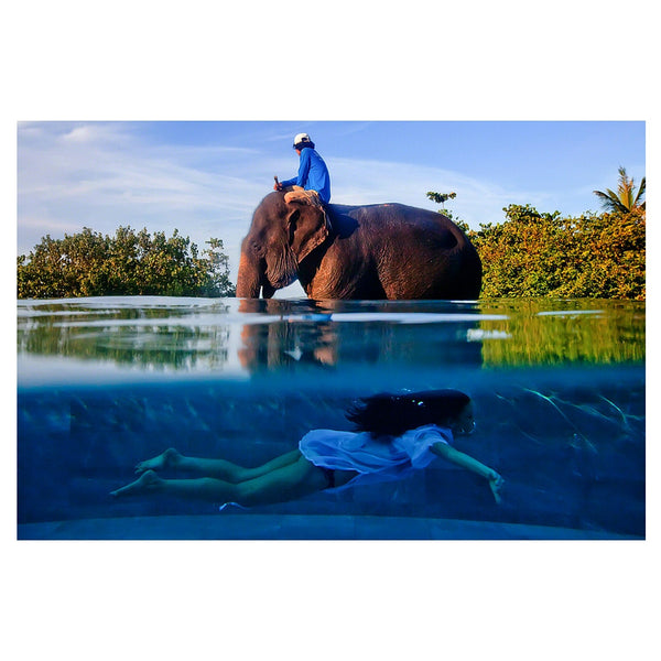 Girl in pool, elephant on land