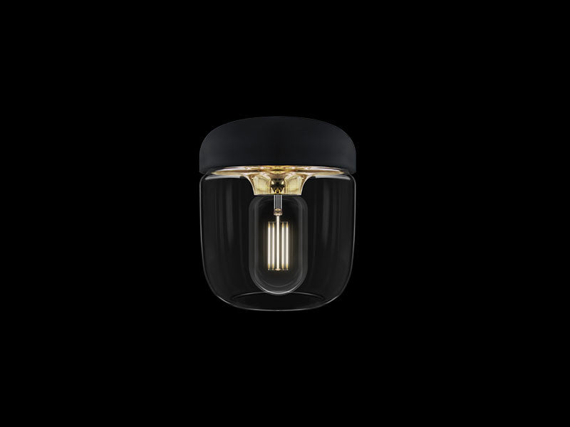 Acorn Black Polished Brass