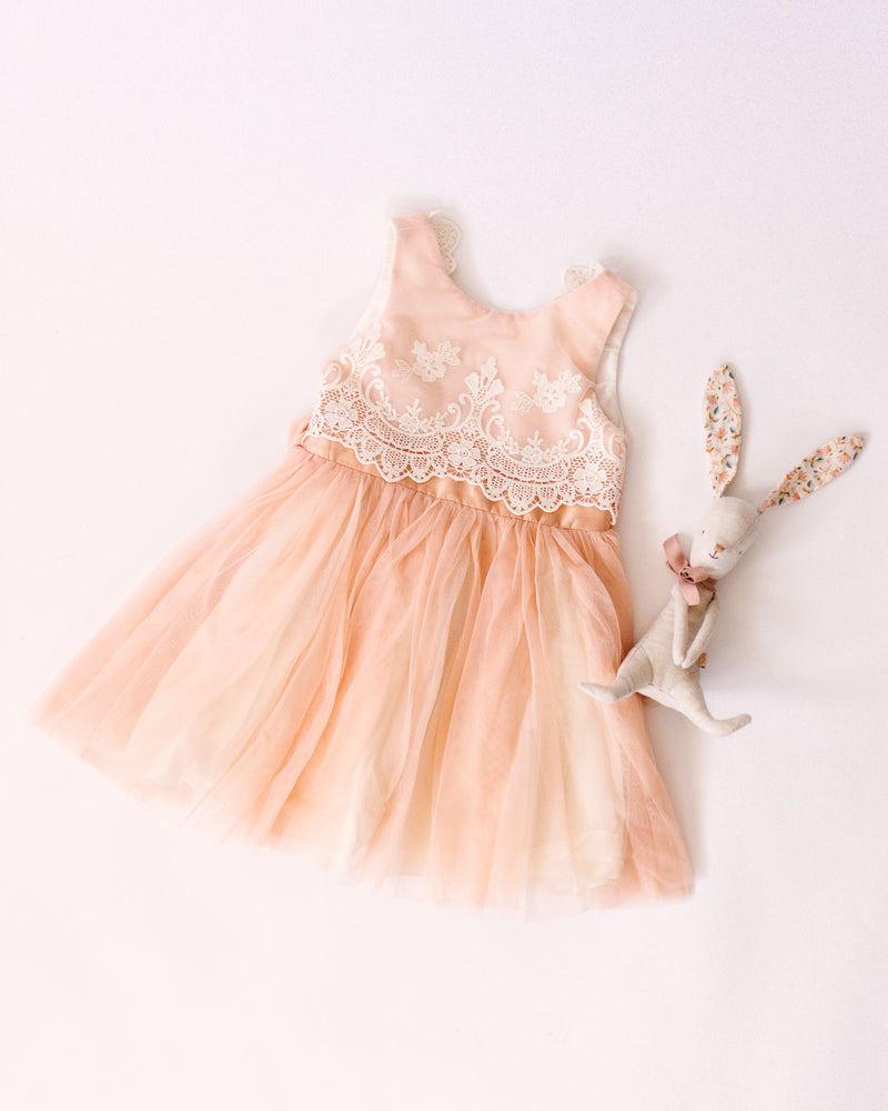 Blush Embroidered Tulle Dress