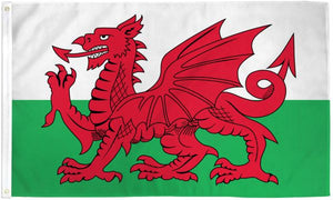 Wales 3x5ft Poly Flag