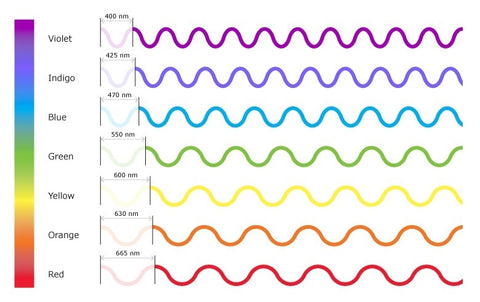 The Relationship Between Light Colors and Wavelength