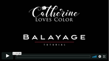 Load image into Gallery viewer, Balayage, Reverse Balayage, & High Contrast Blonde Tutorial Bundle
