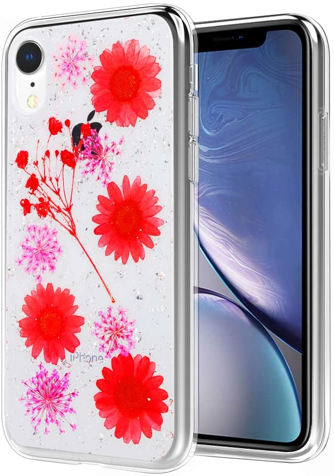 Apple IPhone XR Floral Dry Pressed Daisy