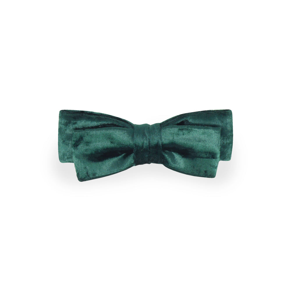 Noeud papillon - Awards - Green