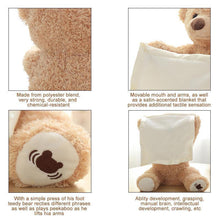 Load image into Gallery viewer, Peek-A-Boo Teddy Bear