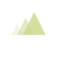 PARADIGM INTEGRATIVE