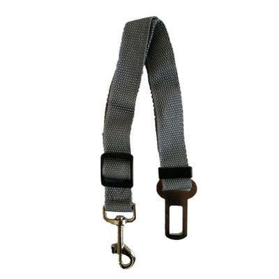 The Seatbelt Leash