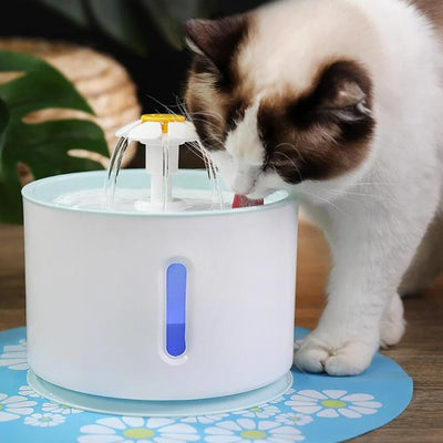 Filtered Cat Drinking Water Fountain