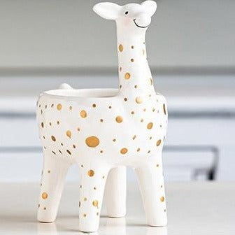 Cartoon Animal Plant Pot