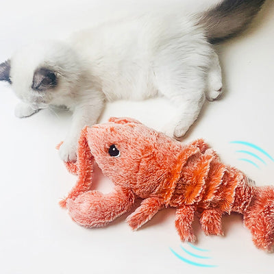 Playful Lobster Cat Toy