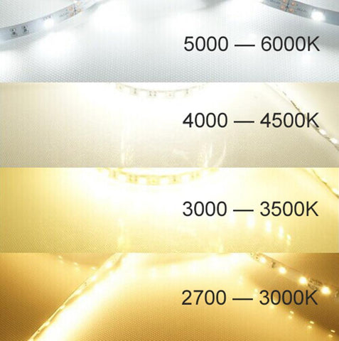 Image of DC 12V Dimmable SMD5050-300 Flexible LED Strips 60 LEDs Per Meter 10mm Width 900lm Per Meter