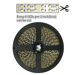 DC 12V Red/Blue/Green/Yellow Dimmable SMD5050-600 Double Row Flexible LED Strips 120 LEDs Per Meter 15mm Width 1800lm Per Meter