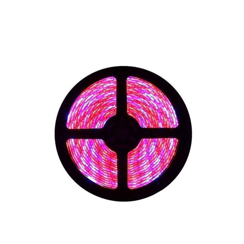 Image of Plant Growth RED:BLUE /660nm:460nm  LED Grow Light  SMD5050 30LEDs  7.2W Per Meter Strip