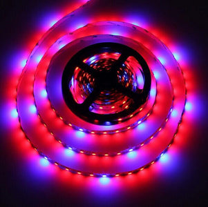 Plant Growth RED:BLUE /660nm:460nm  LED Grow Light  SMD5050 60LEDs  14.4W Per Meter Strip