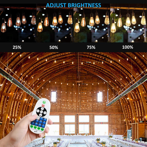 1500Watt AC110V/220V LED Dimmer for 110V/220V LED String Light, Wireless Remote Control Dimmer with 3 Prong Outlet, Timer Switch