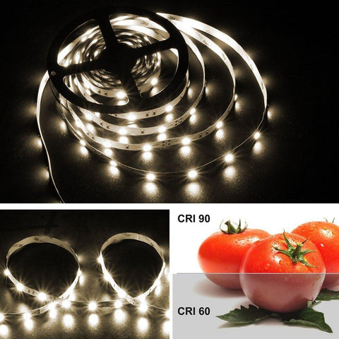 Image of High CR I> 90 DC 12V Dimmable SMD5050-150 Flexible LED Strips 30 LEDs Per Meter 10mm Width 450lm Per Meter