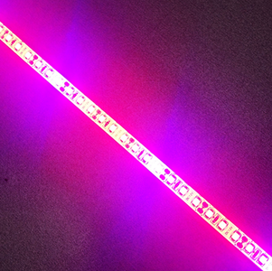 Plant Growth RED:BLUE /660nm:460nm  LED Grow Light  SMD2835 120LEDs  24W Per Meter Strip