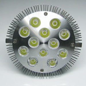 12W (12x1W) PAR38 LED Lamp with E27 Edison Screw Base 90W Equivalent 100-240V AC Silver Housing Indoor Type
