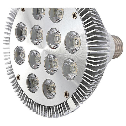 Image of 12W (12x1W) PAR38 LED Lamp with E27 Edison Screw Base 90W Equivalent 100-240V AC Silver Housing Indoor Type