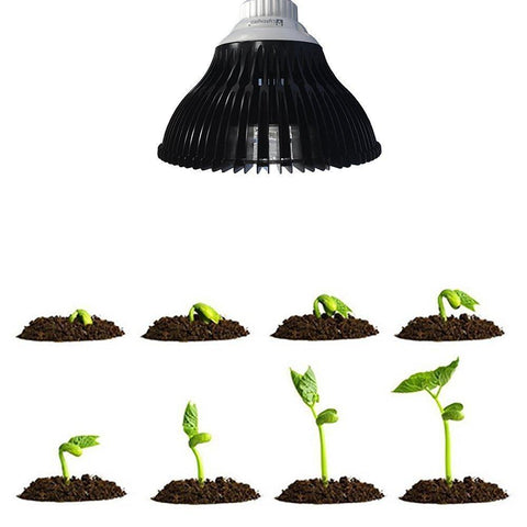 Image of 12W LED Growing Lamp E27 Base 4 Bands Plant Growing Bulb for Plant Works Best with Seeds through Flowering, Indoor Garden Greenhouse, Hydroponics and Aquatic Systems