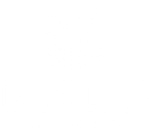 BLACK LINE by REEF