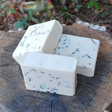 Load image into Gallery Viewer, Winter Hike | Artisan Soap