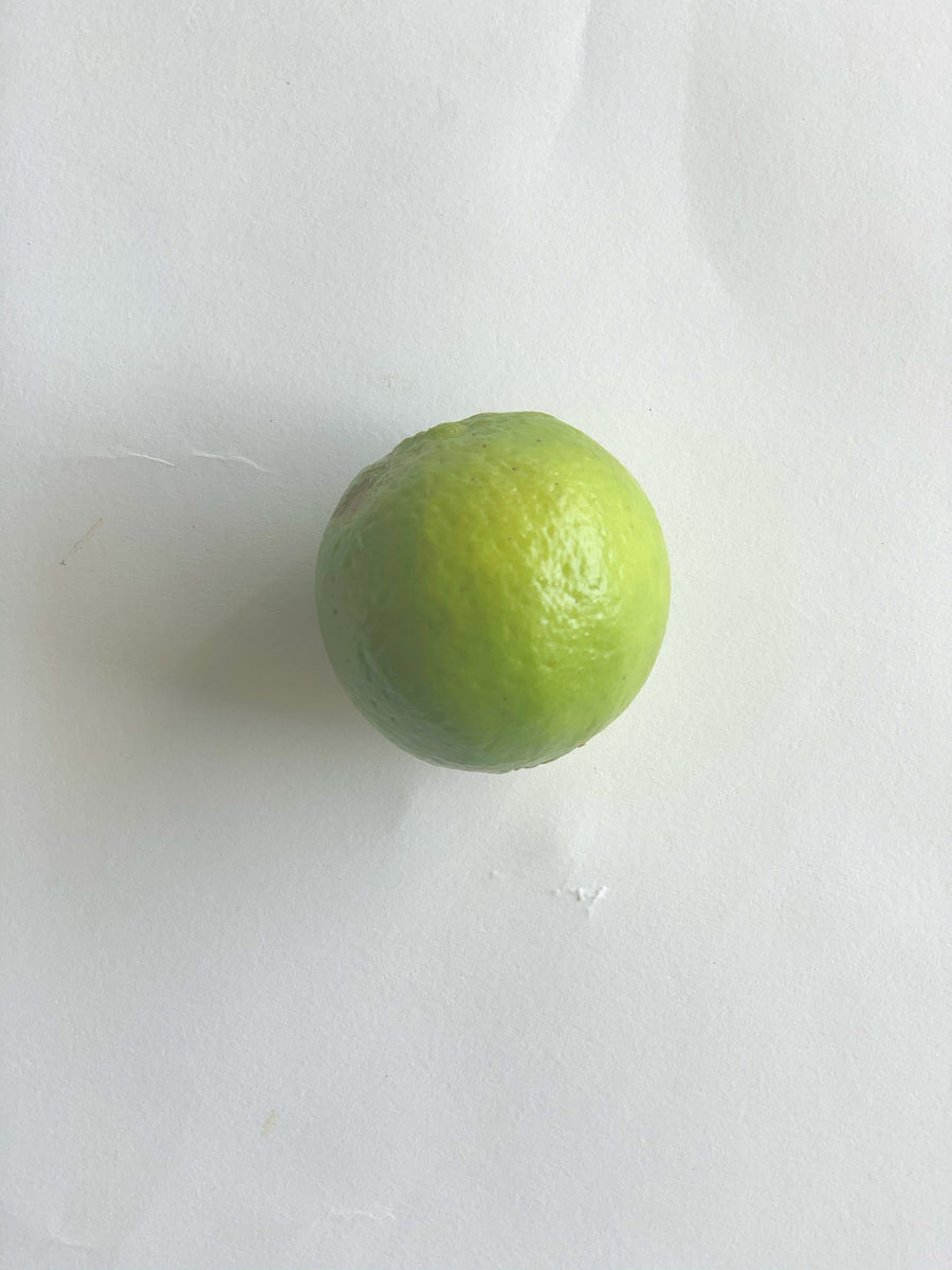 Lime - 4 pieces Produce The Grocery Store by Fed