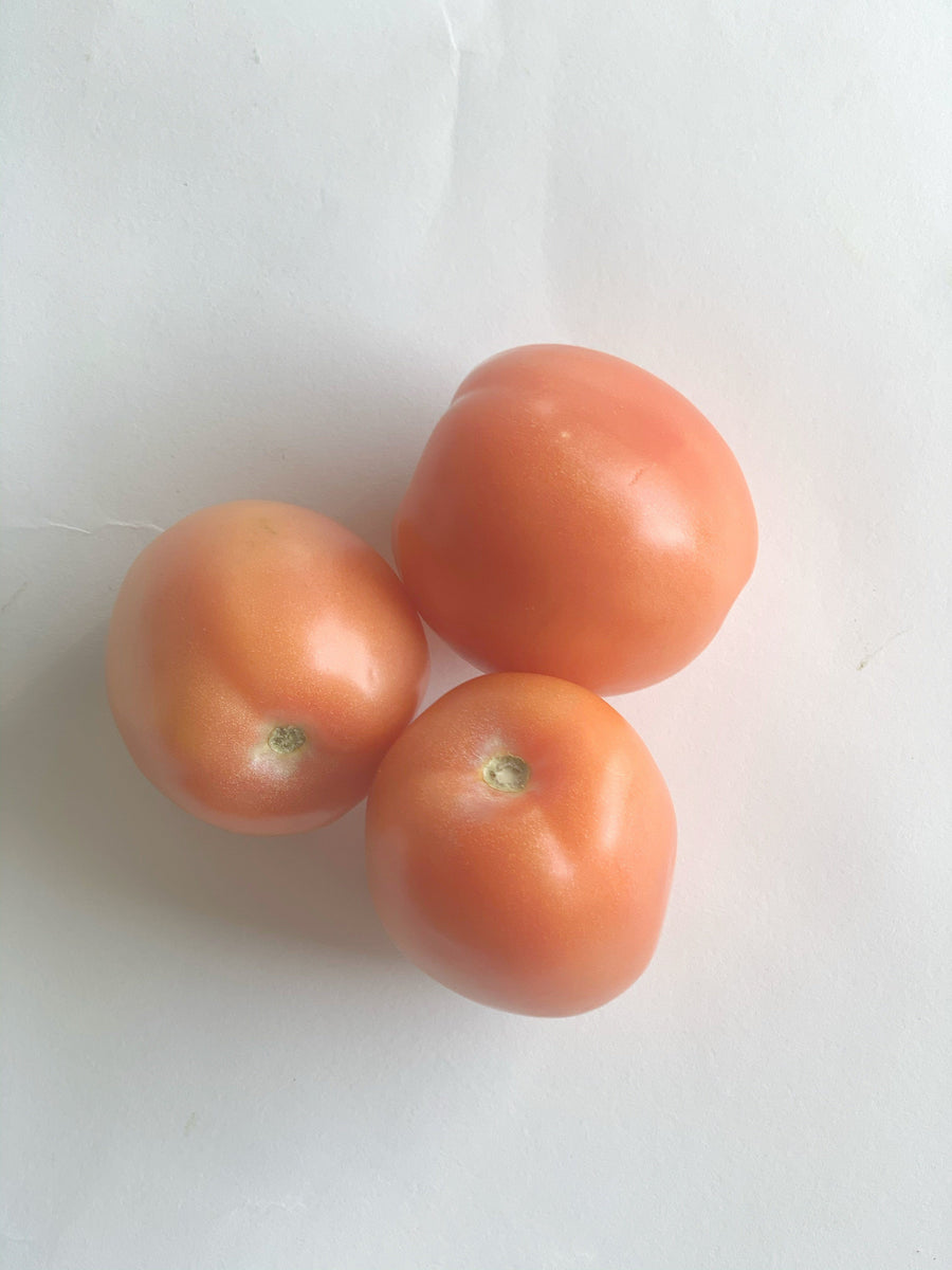 Roma tomato - 1lb Produce The Grocery Store by Fed