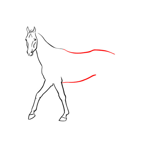 cheval-corps