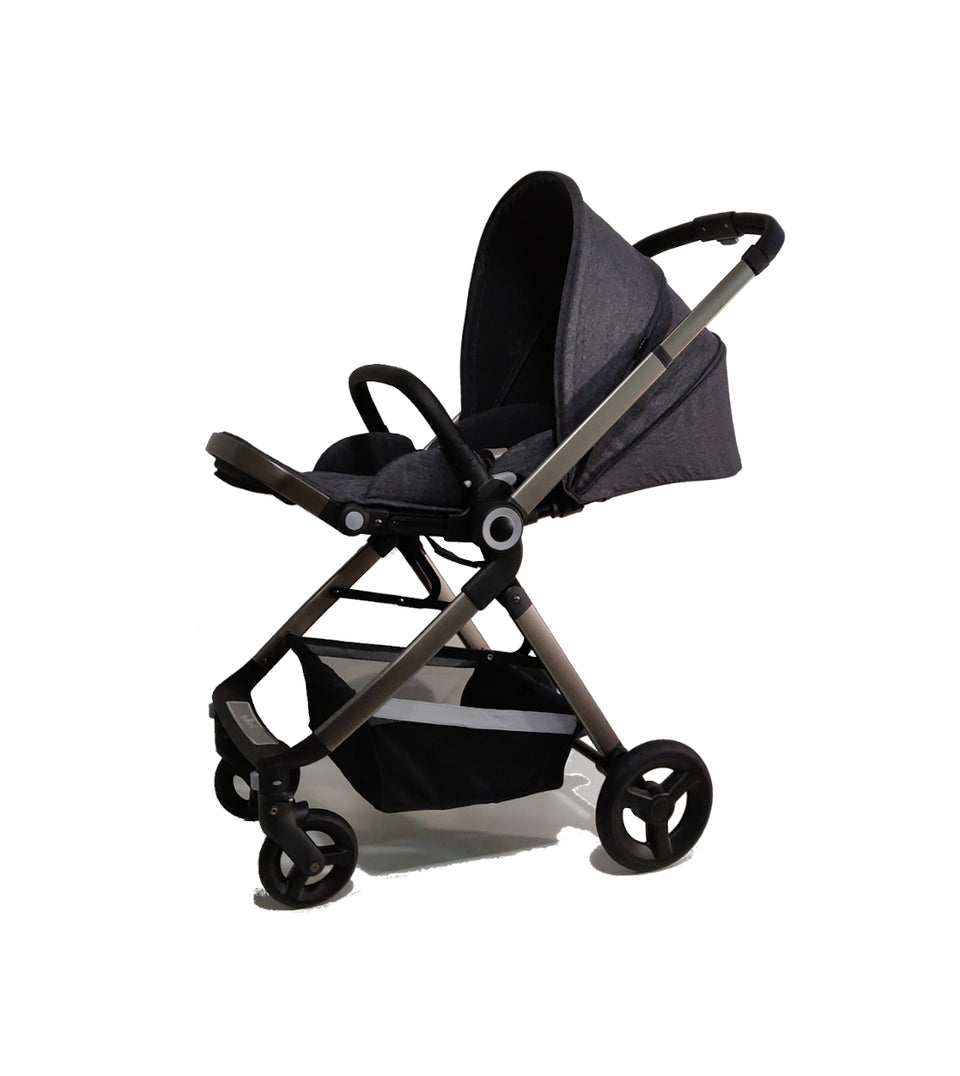 2 in 1 Stroller and Citi Car Seat - AlfaKids