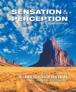 Sensation and Perception 10th 10E Bruce Goldstein