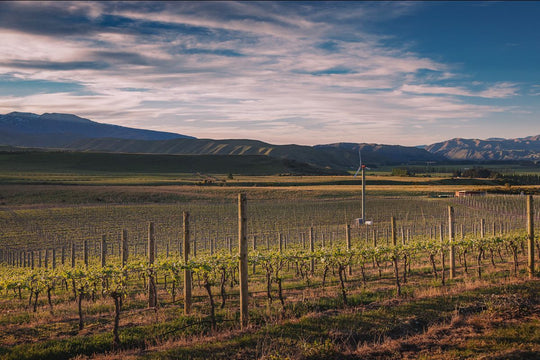 The Waitaki Valley