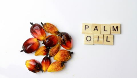 What products contain palm oil