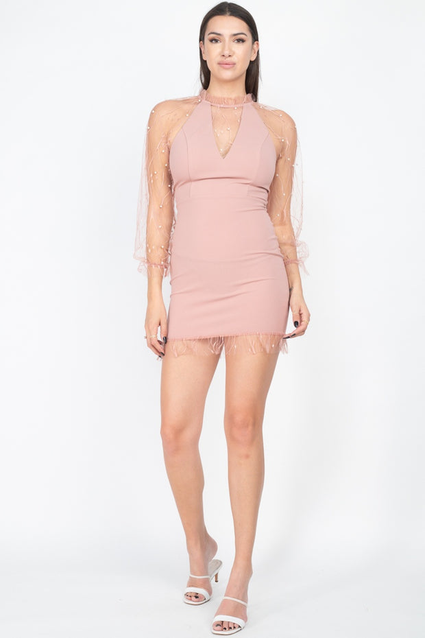 Pearl Trim Mesh Bodycon Dress