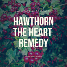 Plant Essence - Hawthorn Composite (the protected heart)
