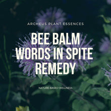 Plant Essence - Bee Balm  (avoid harsh words)