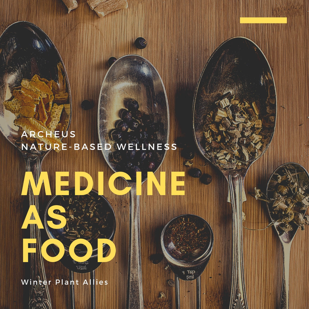 Medicine as Food - Winter Plant Allies 1 May