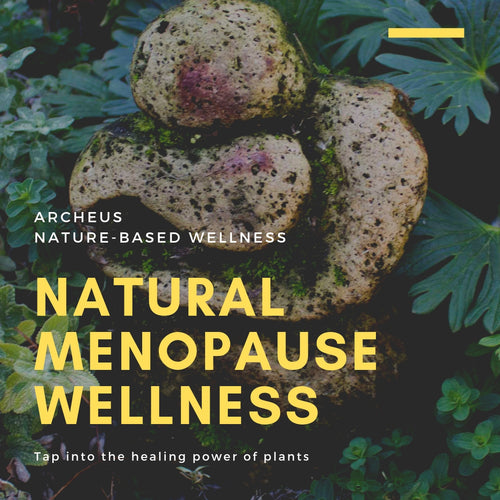 Natural Menopause Wellness Seminar 10 April
