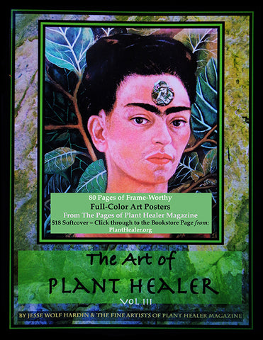 The Art of Plant Healer