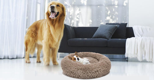 Calming Comfy Dog Bed