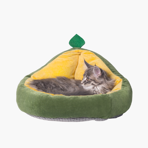Pet Nest Avocado Type
