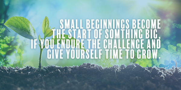 Don't Despise Small Beginnings!