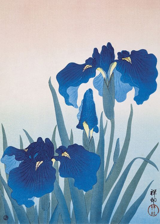 Museums and Galleries - Blue irises